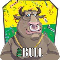 logo the bull schijndel