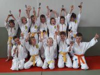 Judo, Budoclub Schijndel