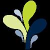 beste-werkgevers-bloem
