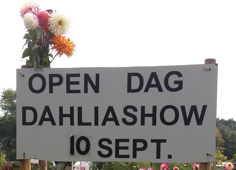 open-dag-Arcadia-2017, Schijndel