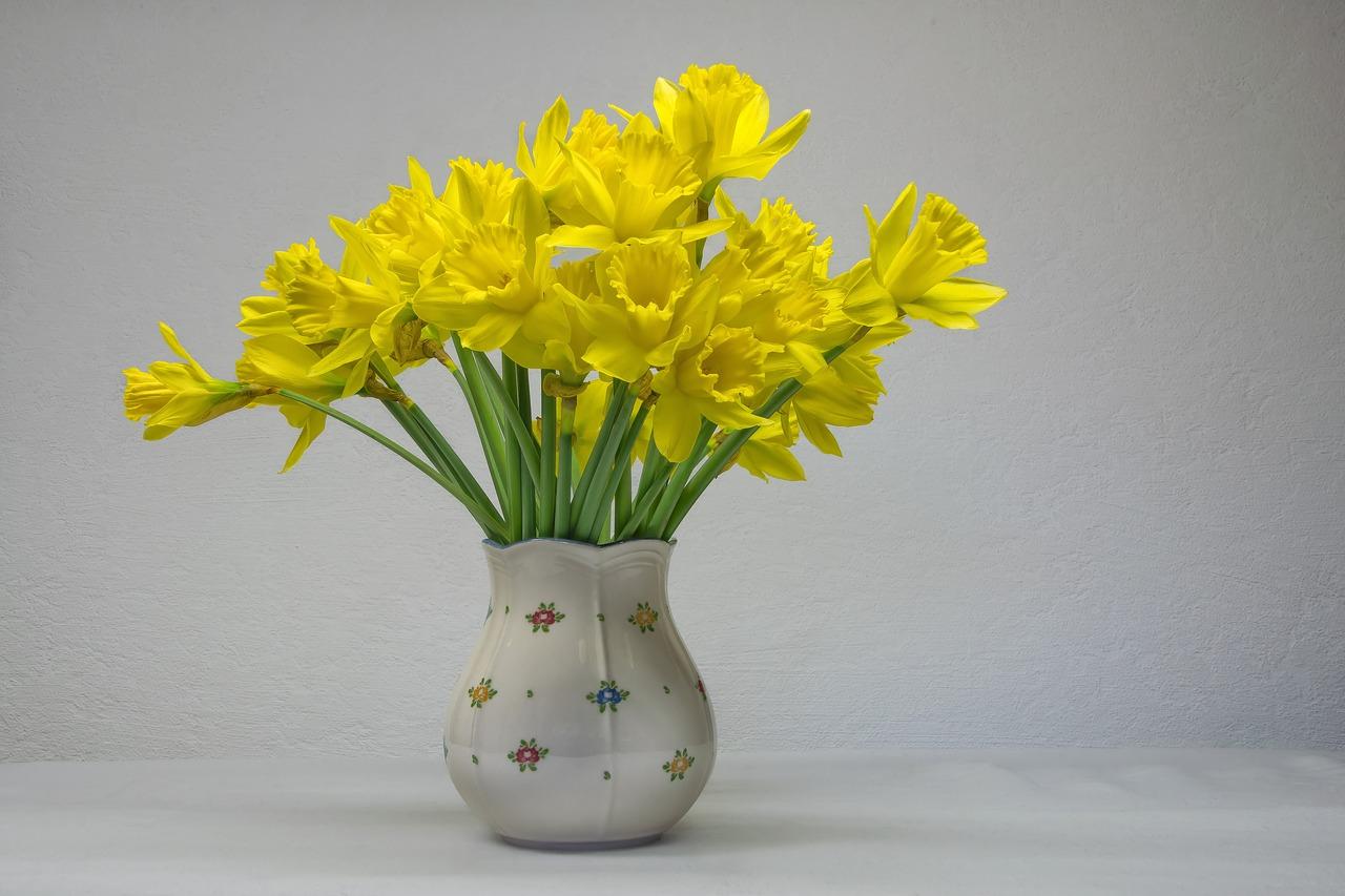 Narcissen, Bloemen
