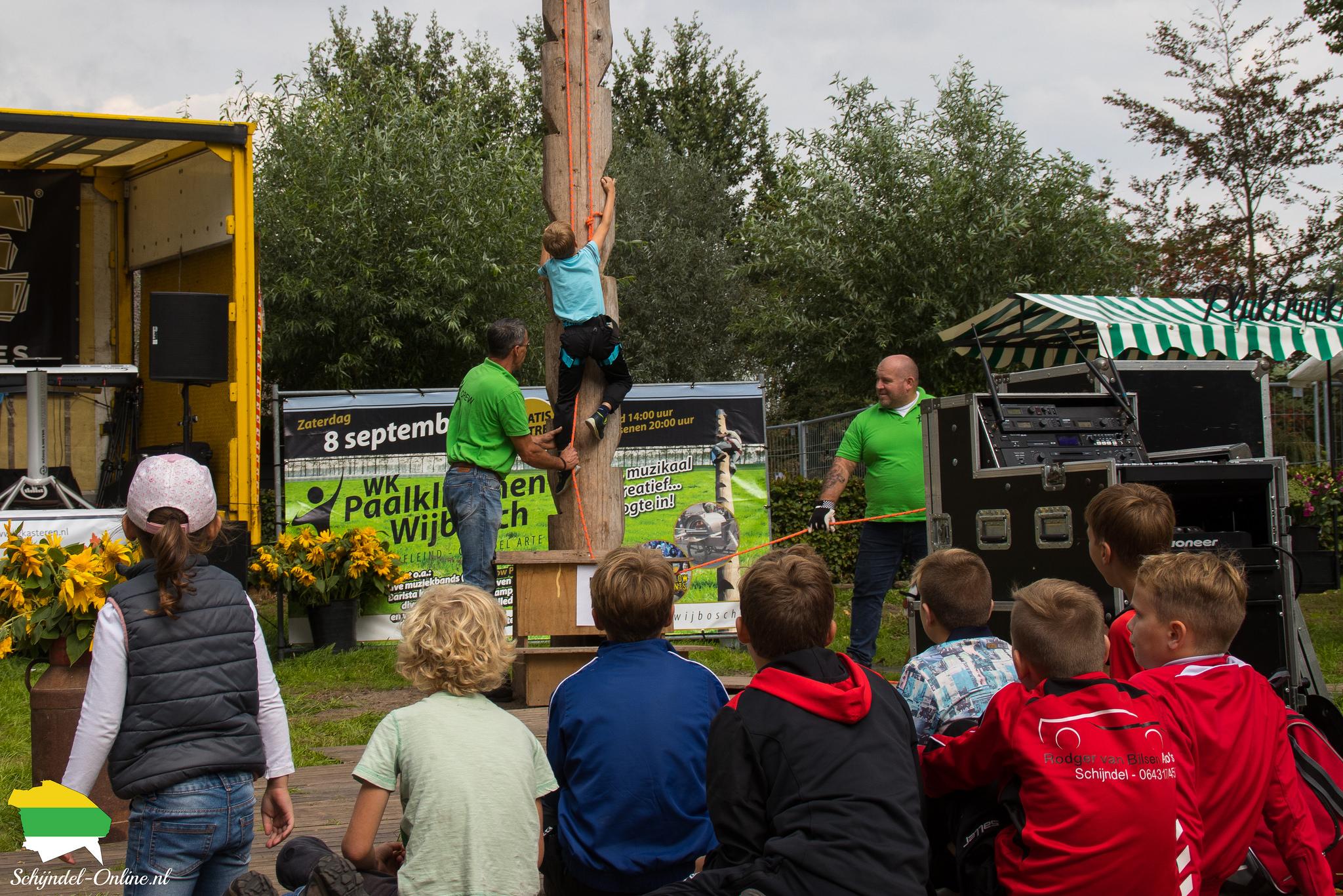 Paalklimmen Wijbosch 2018
