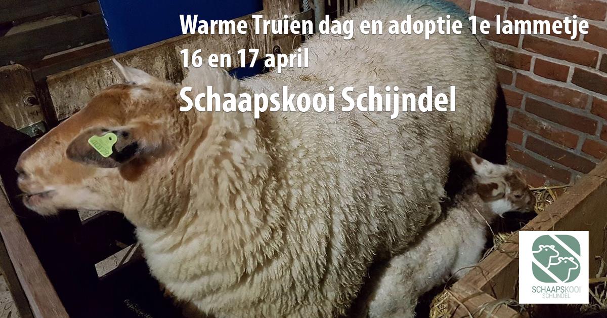 Schaapskooi-Schijndel_WTDenA1L