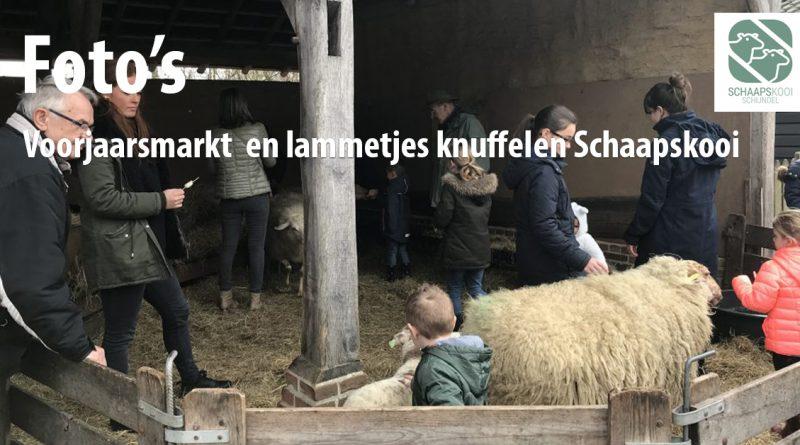Schaapskooi-Schijndel_voorjaarsmarkt-2019