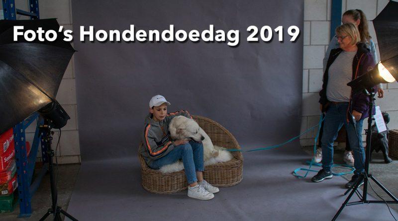 Foto's Hondendoedag 2019