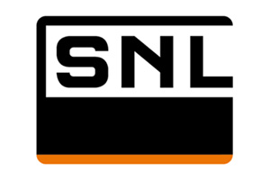 Logo SNL Group
