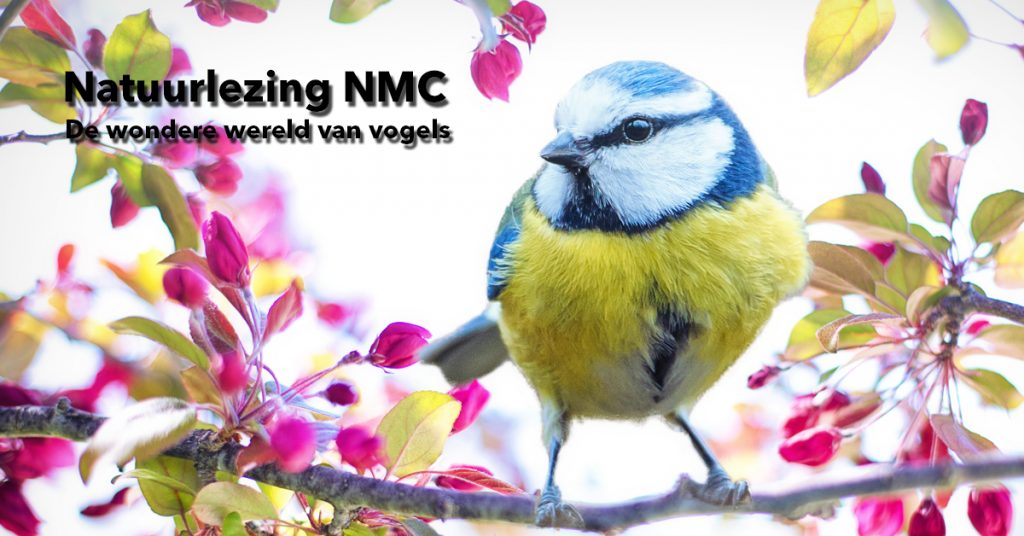 NMC_Natuurlezing