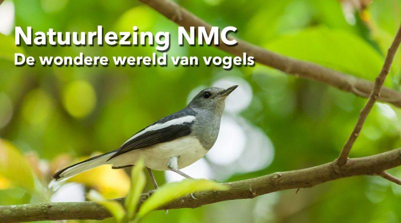 Natuurlezing NMC natuurlezing vogels