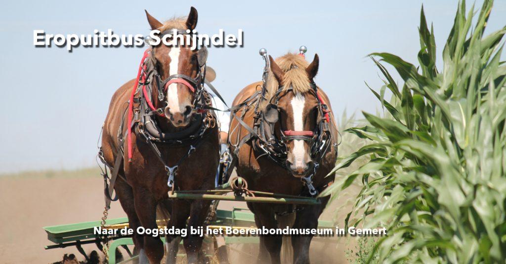 Welzijn-de-Meierij_Eropuitbus_Boerenbondmuseum
