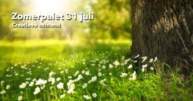 Welzijn-de-Meierij_zomerpalet-31-juli