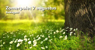 Welzijn-de-Meierij_zomerpalet-7-augustus